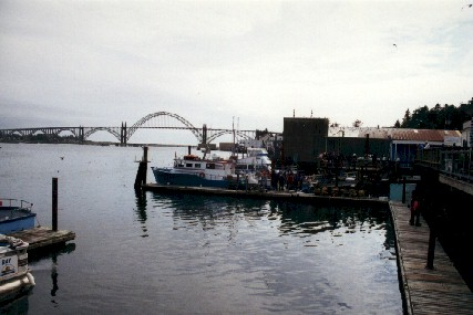 Collecting in newport oregon for Charter fishing newport oregon